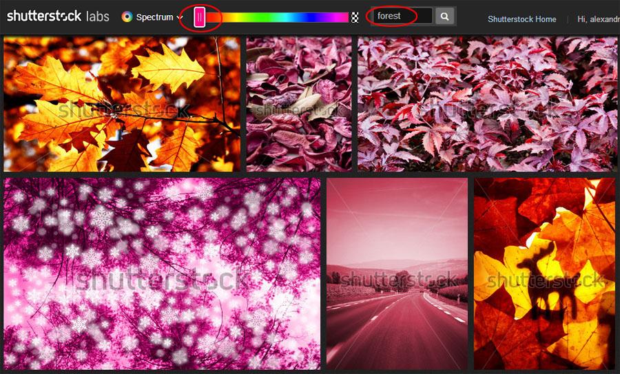 Cum găsești imagini bune pe Shutterstock